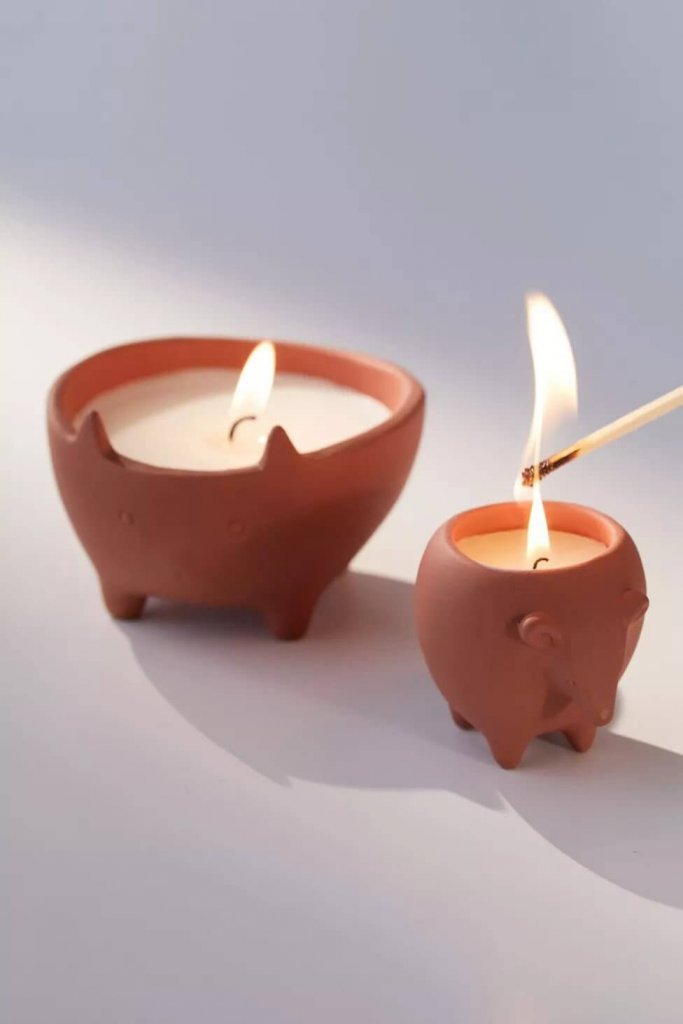 cute candle that works as a planter too